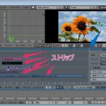 【Blender】ビデオシーケンスエディタの使い方【動画編集】
